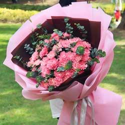 30朵粉色康乃馨,健康幸福