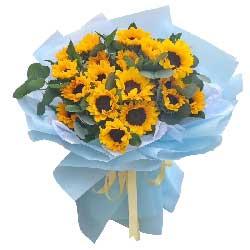 18朵向日葵,世界更美好