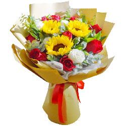 11朵红玫瑰,3朵向日葵,朝阳的沐浴