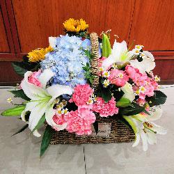 22朵粉色康乃馨百合搭配,手提花篮,我的心在为而跳动