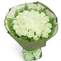 33朵白玫瑰,你是我的永远