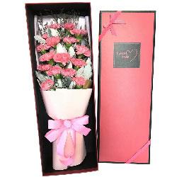 18朵粉色康乃馨,天天开心永远爱你