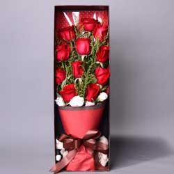 11朵红玫瑰,礼盒装,快乐心情