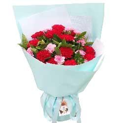 12朵红色康乃馨,永远快乐健康
