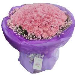99朵粉色康乃馨,每天都有好心情
