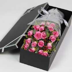 19苏醒玫瑰,礼盒装,对你的爱意