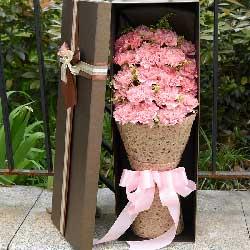 19朵粉色康乃馨,礼盒装,有你不会迷失方向
