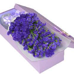 紫色勿忘我一扎,礼盒装,愿携你手走向生活的绿洲