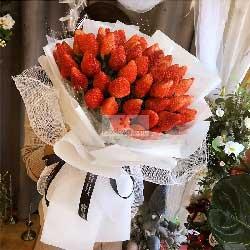 48颗草莓,共度这美妙的人生世界