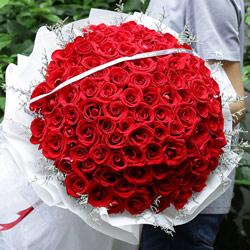 99朵红玫瑰,人生因你而精彩