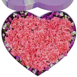 30朵粉色康乃馨,礼盒装,永远美丽又幸福