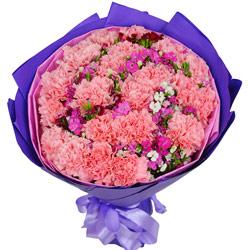 22朵粉色康乃馨,祝您快乐永远