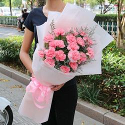 20朵粉色康乃馨,重拾您的爱