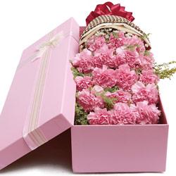 18朵粉色康乃馨,礼盒装,深深的爱