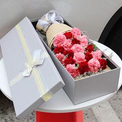 19朵康乃馨,礼盒装,幸福每一年