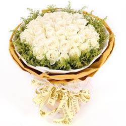 30朵白玫瑰,相惜相守