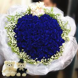52朵蓝玫瑰,与你的春夏秋冬