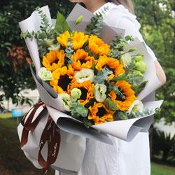 9朵向日葵,有您,我信步风雨人生