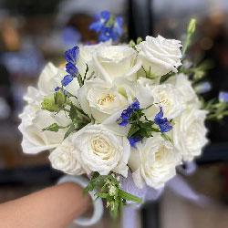 11朵戴安娜粉玫瑰,想你爱你