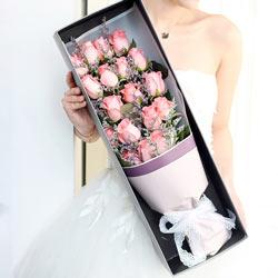 20朵戴安娜粉玫瑰,相依相恋