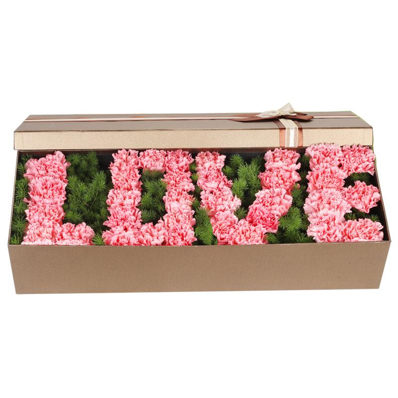 33朵粉色康乃馨,礼盒装,您是我的榜样
