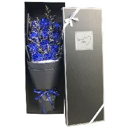 11朵蓝玫瑰,礼盒装,忘不掉的摸样