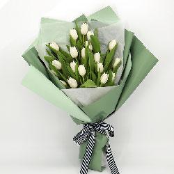 19朵白色郁金香,爱的天使