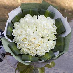 33朵白玫瑰,爱你的心依然充满青春动力