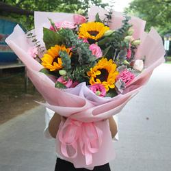 3朵向日葵,11朵粉色桔梗,祝您健康快乐