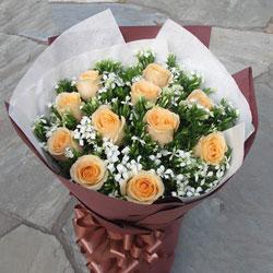 11朵香槟玫瑰,我会珍惜你