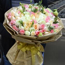 33朵玫瑰,顾影问君安