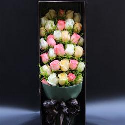 31朵玫瑰,礼盒装,情浓幸福更甜蜜