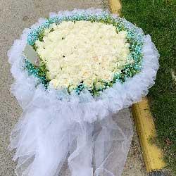 18朵白玫瑰,春暖花开我爱你