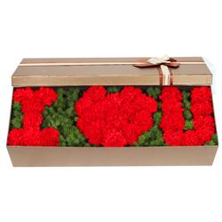 33朵红色康乃馨,礼盒装,祝福您幸福安康