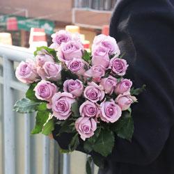 20朵紫玫瑰,有我的陪伴将更加幸福