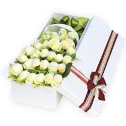 33朵白玫瑰,礼盒装,你我比翼双飞,和好百年