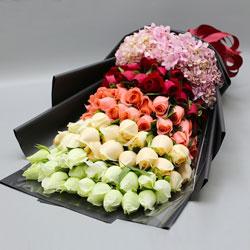 66朵玫瑰,爱你要一生一世
