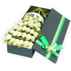 33朵白玫瑰,把爱的幸福送到你的心中