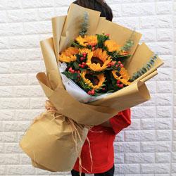 6朵向日葵,感谢您给了我生命的力量