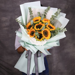 8朵向日葵,您是我幸福的港湾
