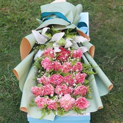 19朵粉色康乃馨,礼盒装,永远安康幸福