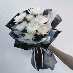 9朵白色菊花,一切都好
