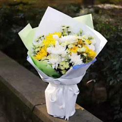 13朵菊花,失去你是一生的痛