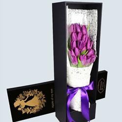 19朵紫色郁金香,美妙的每一刻