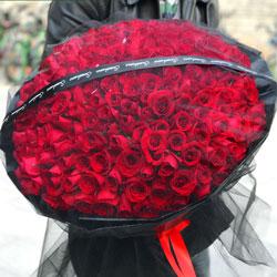199朵红玫瑰,生命因你而精彩