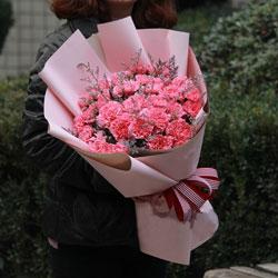 30朵粉色康乃馨,永远美丽