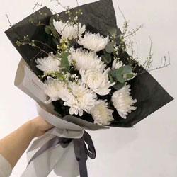 11朵白色菊花,逝者走好生者惜福