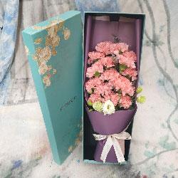 16朵粉色康乃馨,礼盒装,殷殷祝福