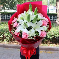 11朵粉色康乃馨,3支白色多头百合,岁月的光