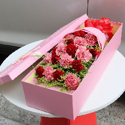 18朵康乃馨,礼盒装,妈妈的爱